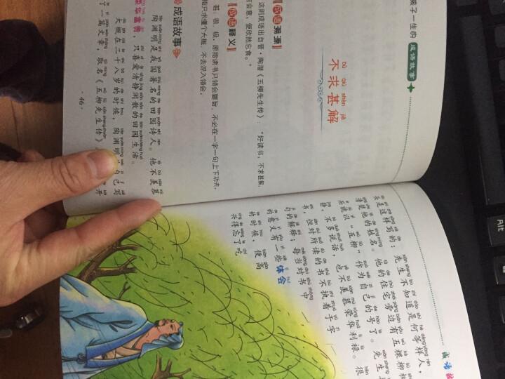 成语故事大全 彩图注音版全4册 儿童读物7-10岁 一二三年级课外书小学生课外阅读书籍 晒单图