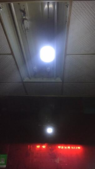 户外照明灯露营灯野营灯停电应急灯家用太阳能充电灯泡夜市LED摆摊地摊照明超亮节能 280W白光--高富帅+续航8~48小时 晒单图