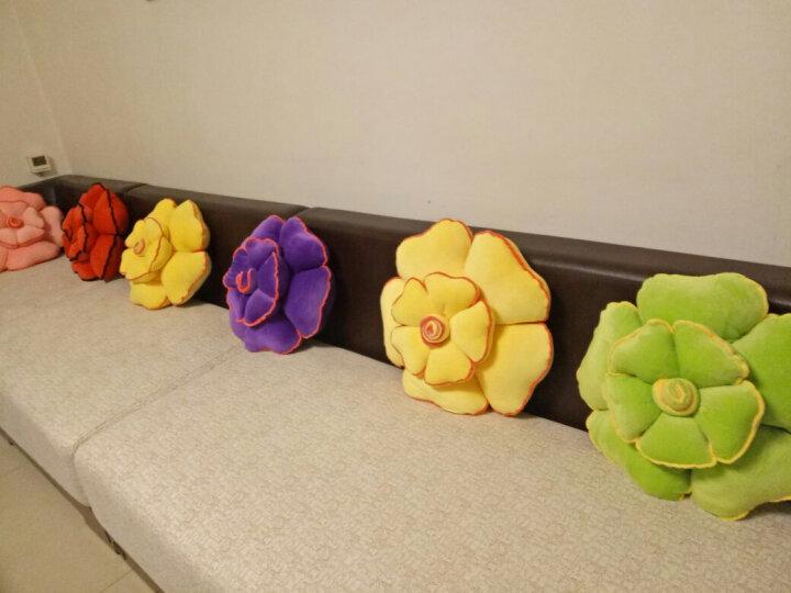 Bybrana玫瑰花抱枕靠枕创意靠垫毛绒花朵可爱床头睡觉用沙发靠背汽车腰靠 粉色玫瑰花 50X50cm 晒单图