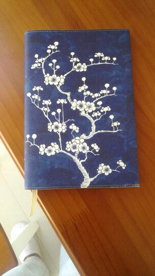 时尚笔记 Daycraft德格夫花花世界系列笔记本女士礼品文具创意记事本日记本 白色 A5 晒单图