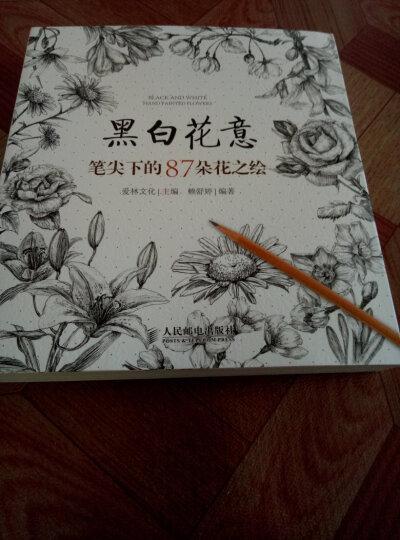 从零开始学习职业画家的秘技:水彩色铅笔之旅 晒单图