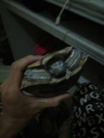 舵手千风 巴尔杉木 纳米材料浮漂浮标 鱼漂 葫芦漂 枣核形 细长身可选 千风脸谱枣核纳米漂 1套3只 晒单图