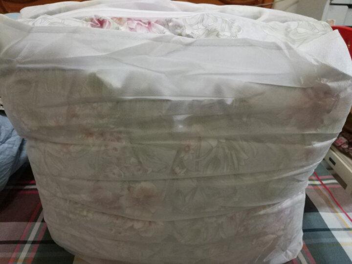 水星家纺 90%鹅绒羽绒被加厚保暖被子 赛尔莎抗菌鹅绒冬被芯 加大双人被芯220x240cm 浅灰色 晒单图