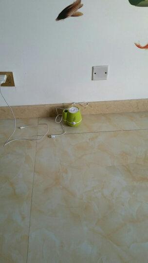 USB迷你加湿器静音办公室桌面学生宿舍卧室家用小夜灯空气净化补水器企业定制 花瓶绿色+花瓶玫红+送小猪 晒单图