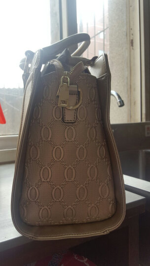 CORALDAISY 2017新款女包鳄鱼纹真皮单肩包女士时尚欧美手提包斜挎包包 金色(4182) 晒单图