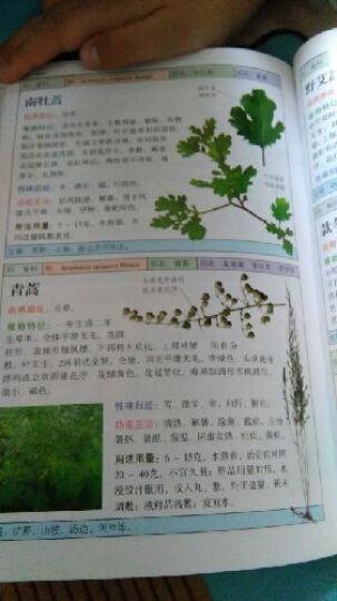 自然珍藏图鉴丛书:北方药用植物 晒单图