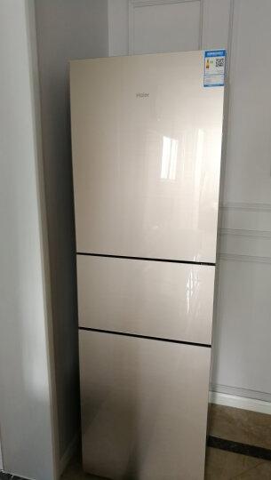 【二手99新】海尔BCD-220WDGC家用冷藏冷冻风冷无霜三开门电冰箱 晒单图