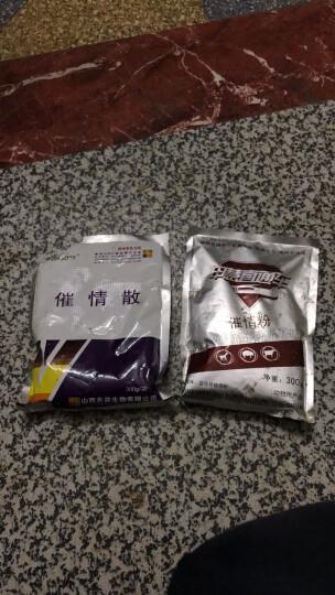 ZHAOYI 兽用兽药发情散 猪牛羊发情促孕药 犬猫配种药母猪纯中药 晒单图