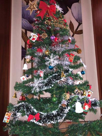 捷昇 圣诞树套餐光纤彩灯发光加密枝头 圣诞节装饰品礼物圣诞帽 1.8米豪华套餐(120个配件+450个枝头) 晒单图