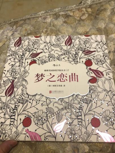 秘密花园涂绘学院丛书:梦幻游乐园 晒单图