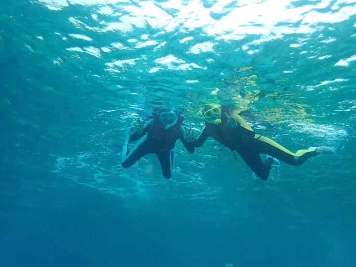 TOPIS浮潜三宝套装 硅胶钢化玻璃高透光清晰防雾平光/近视潜水镜 全干式呼吸管潜水装备 268黑 晒单图