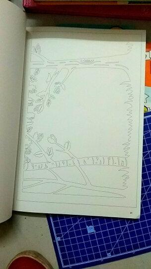 此刻花开2 一本精美绝伦的手工纸雕书 晒单图