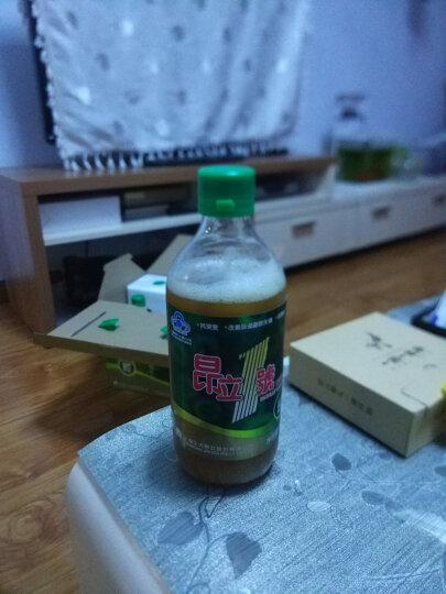 昂立1号口服液500ml*6瓶 益生菌含牛磺酸 改善肠道菌群抗氧化调节血脂 1箱 晒单图