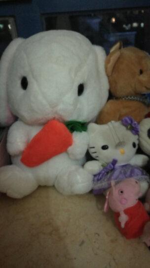 阳光猴 可爱兔子公仔抱枕小白兔毛绒玩具垂耳兔公仔布娃娃玩偶节日礼物女生 白色萝卜款 40厘米 晒单图
