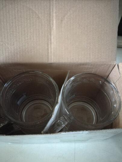 玻璃茶杯 带盖单层玻璃杯大容量泡茶杯耐热水杯办公室会议家用带手柄杯子 祥云杯-450毫升【2只装】 晒单图
