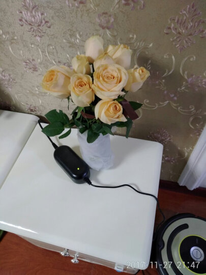 礼之尚 鲜花速递同城红玫瑰花礼盒11枝玫瑰花束全国送花指定日期送达520情人节 I款11朵香槟玫瑰礼盒 晒单图