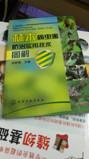 林木病虫害防治实用技术图解 晒单图