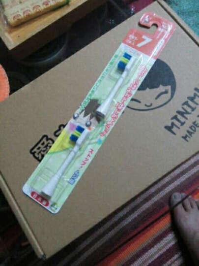 【618秒杀】日本原装进口minimum电动牙刷儿童牙刷声波震动牙刷婴幼儿电动牙刷软毛防水自动牙刷 BRT-7T儿童刷头 晒单图