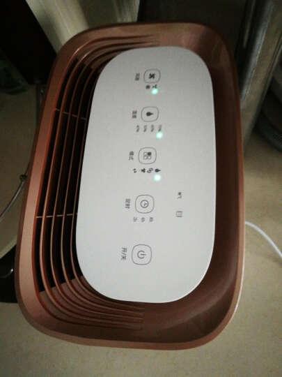 TCL 除湿机/抽湿机/除湿器家用 智能静音办公 地下室 净化干衣 升级款12E 晒单图