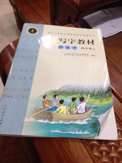 人教版 写字教材(钢笔字)4四年级上册写字教材语文书同步字帖 晒单图