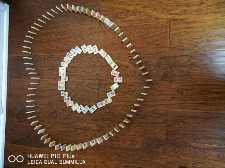 木贵婴100片双面榉木动物百科多米诺骨牌儿童益智木制玩具MGY00500六一儿童节礼物 晒单图