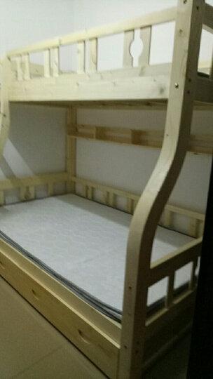 雅霏-儿童床高低床子母床上下床双层床松木床上下铺实木床双人床成人床 清漆-上1.0/下1.2米 晒单图