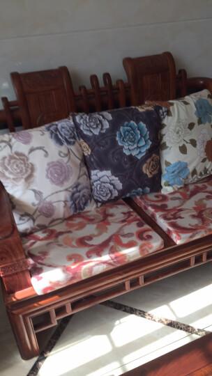 大抱枕靠垫 椅子靠枕腰靠 60沙发抱枕含芯 办公室靠垫冬F\ 短毛绒-争艳-紫 60X60CM 含芯 晒单图