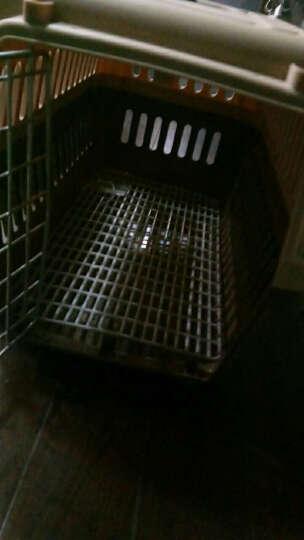憨憨乐园 宠物航空箱外出箱子托运箱旅行箱运输猫笼子便携咖啡色中号+狗狗饮水器蓝色500ml套装 晒单图