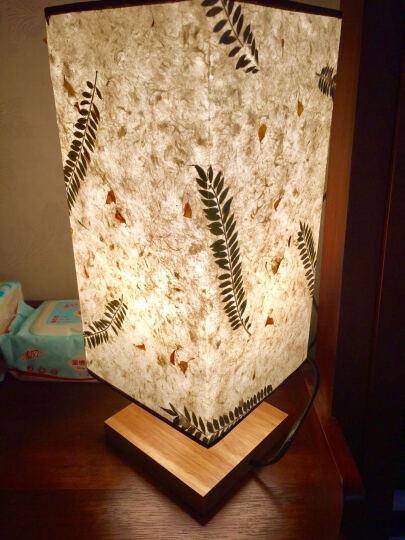 【纸寿千年】牛皮纸纸艺灯 创意小夜灯 卧室灯具床头装饰 书房客厅灯 节日生日礼物 创意礼品 纸鸢包邮送暖灯 晒单图
