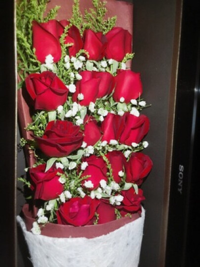 初卉鲜花速递红玫瑰花送女友 鲜花礼盒预定同城送花生日礼物女生老婆全国花店送花北京上海成都重庆 R款-艳粉玫瑰99朵 鲜花 晒单图