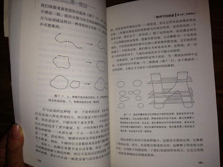 第一推动丛书·物理系列:物理学的困惑 晒单图
