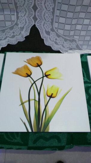 爱度ks 现代简约装饰画客厅沙发背景墙画餐厅挂画三联画壁画有框画 水彩花卉【黑色画框】 50*50cm*3副全套 晒单图