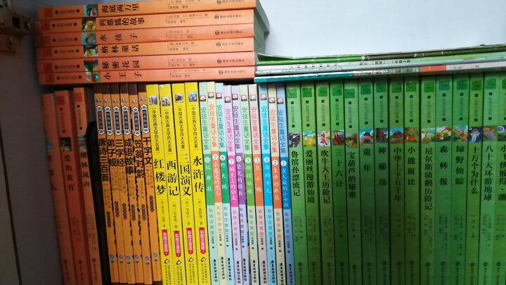 幼学琼林(彩绘注音版),智慧熊图书 晒单图