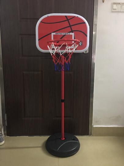 育儿宝儿童篮球架子玩具铁杆铁框可升降家用室内小孩篮筐投篮架男孩运动 1.5米篮球架+2球 晒单图