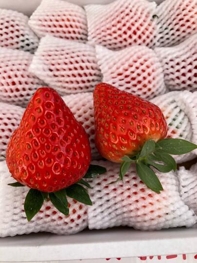丹东99草莓红颜奶油草莓 新鲜九九草莓水果 2斤装 顺丰快递 晒单图