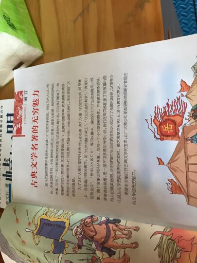 中国十大名著(青少版):岳飞传(超低价典藏版) 晒单图