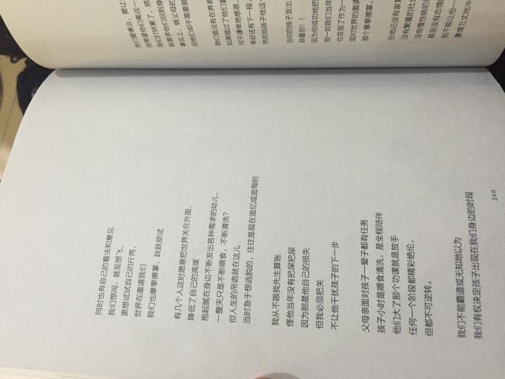 中国古典小说少年版·郑和下西洋 晒单图