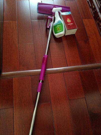夏阳(XIAYANG) 地板蜡实木地板精油清洁剂去污保养家用护理油500ml+500ml 赠品拖把 晒单图