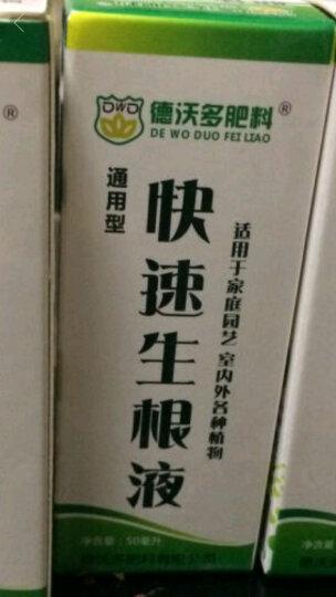 德沃多肥料 磷酸二氢钾 适用于各类植物花卉 通用型水溶肥 30g/袋 晒单图