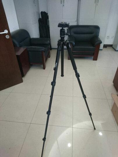 得图Detu F4 全景相机720度VR商用3D摄像机6K画质 一键拼接 傻瓜式操控 支持全景直播 黑色 晒单图