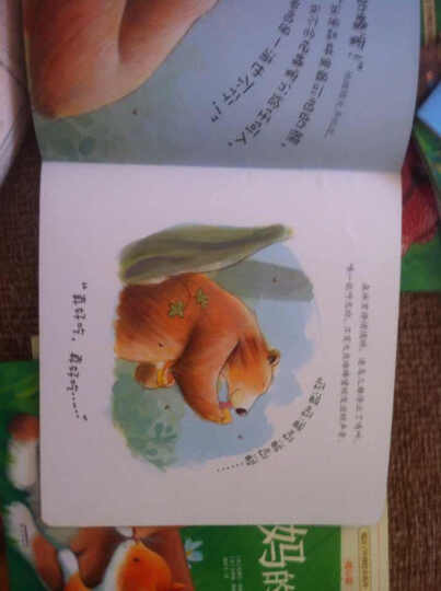 暖房子经典绘本系列第五辑暖心篇:别碰我的蜂蜜 晒单图