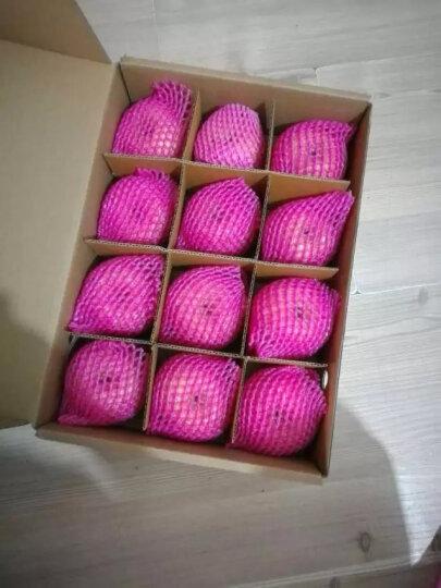 越南进口白心火龙果 3个装中果 单果约300~350g 新鲜水果 晒单图