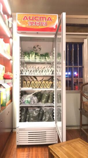 澳柯玛(AUCMA) SC-387(NE)387升大容量立式单门冷藏展示柜商用家用保鲜柜 晒单图