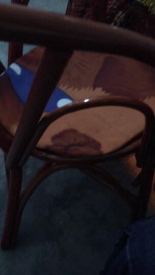 雪妮尔 汽车打蜡镜面抛光盘自粘羊毛球抛光机工具海绵轮波浪海绵盘5英寸 套装 晒单图