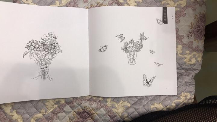 细语时光:梦幻主题手绘涂色书 晒单图