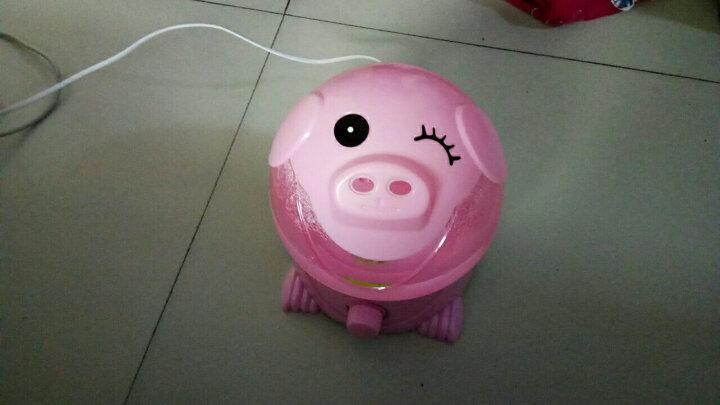 湿器迷你卡通静音办公室家用卧室空调空气净化大容量香薰增湿机 粉猪 晒单图
