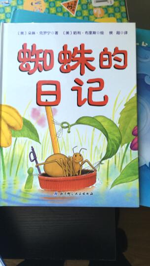 蜘蛛的日记 [3-9岁]经典少儿绘本故事书读物 激发孩子想象力和创作力  晒单图
