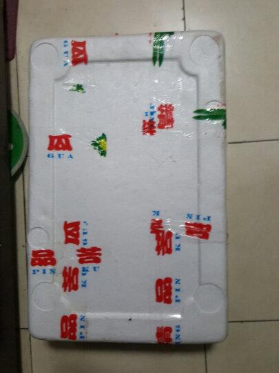 【寿光馆】圣德利苦瓜凉瓜新鲜蔬菜 蔬菜寿光特产 2500g 晒单图