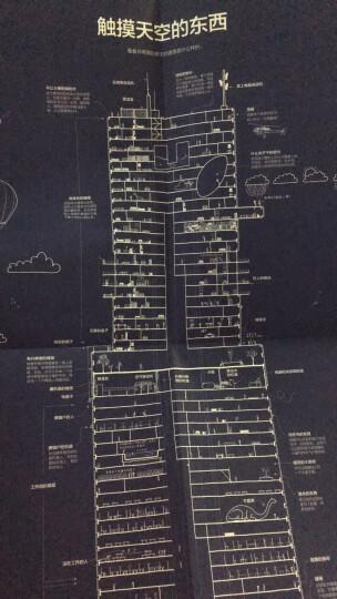 消失的脚印:BBC御用摄影师20年野生动物拍摄笔记 晒单图
