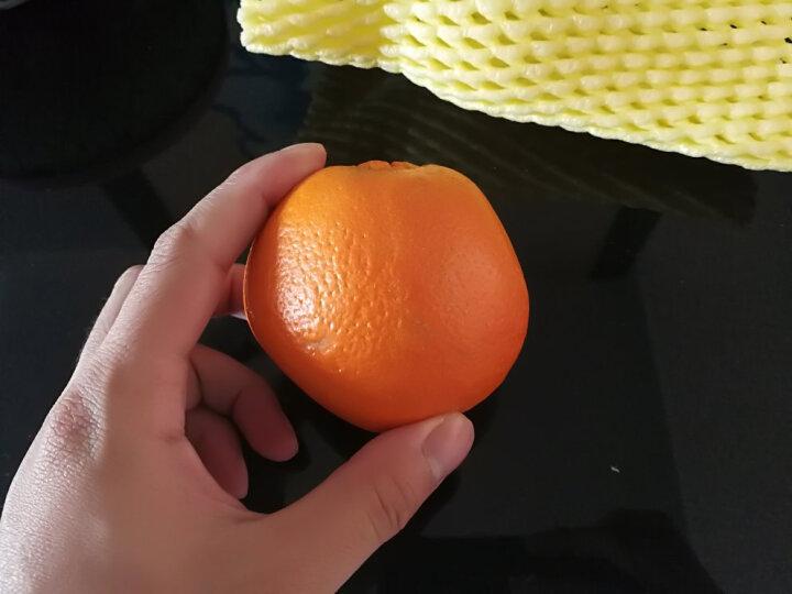 【第2份5折】美国进口新奇士橙 6个 单果约200g 新鲜水果 晒单图